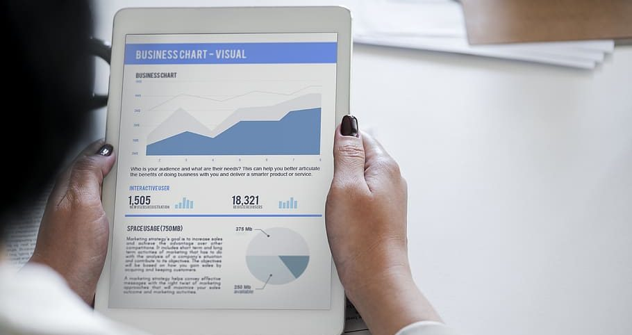 LE NET EXPERT - Rapports et statistiques